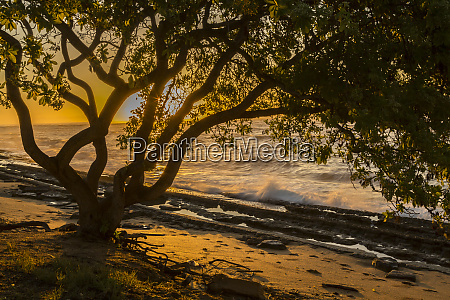 usa, , kauai, , wawalohi, beach, park., sunset - 27340626