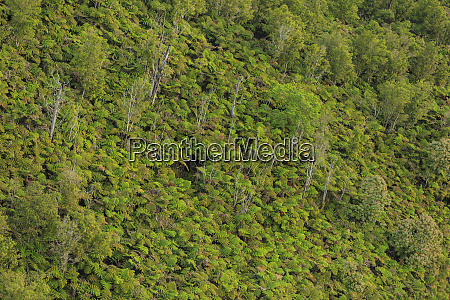 helicopter tour from hilo to puu