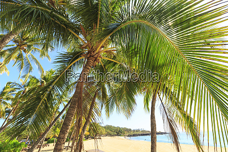 hulopoe beach park considered one of