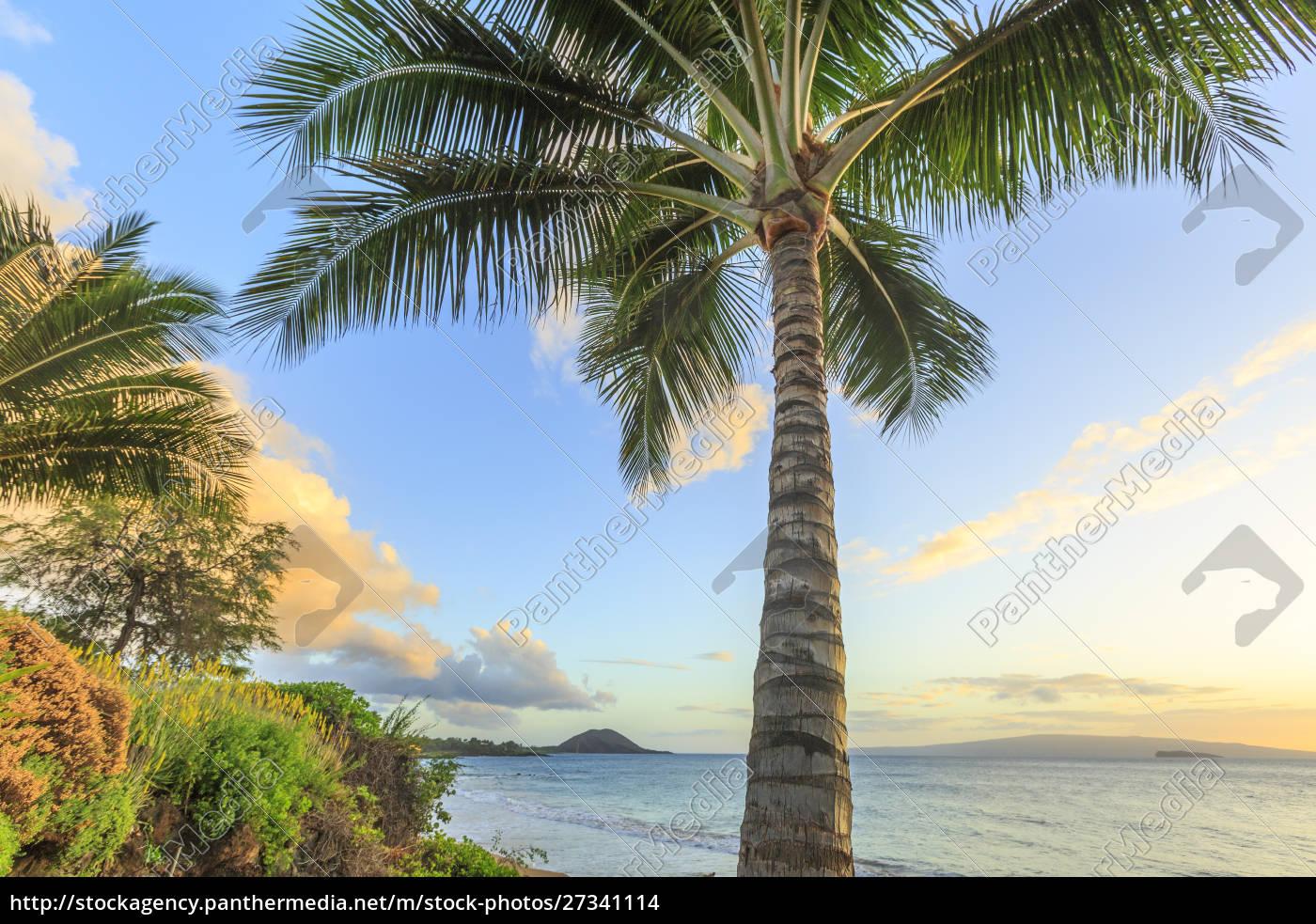 sunset, at, beach, near, wailea, , maui, - 27341114