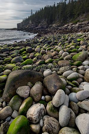 usa maine boulder beach acadia national