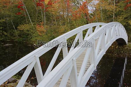 white footbridge autumn somesville mount desert