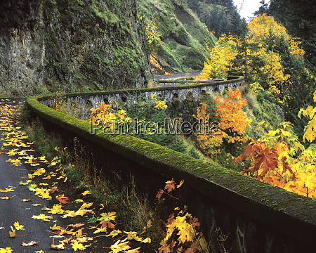 usa oregon columbia river gorge national
