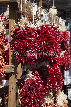 usa santa fe new mexico chile