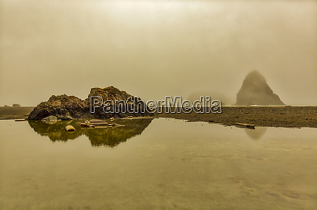 usa oregon whales head rock shoreline