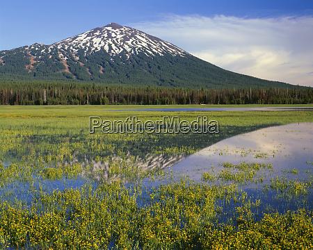 usa oregon deschutes national forest mount