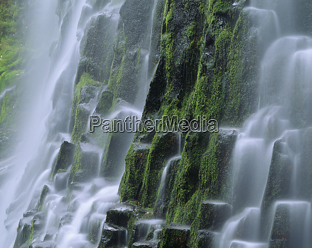 usa, , oregon, , proxy, falls., waterfall. - 27343437