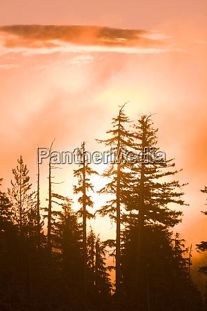 sunrise scenic views near timberline lodge