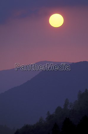 usa tennessee great smoky mountains np