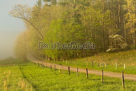 early morning view of hyatt lane