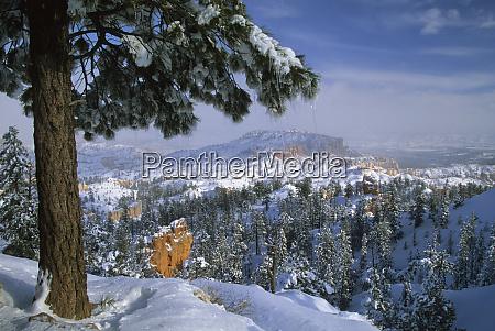 usa utah bryce canyon in winter