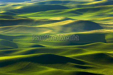 usa washington state palouse hills farmland
