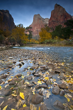 usa utah zion national park the