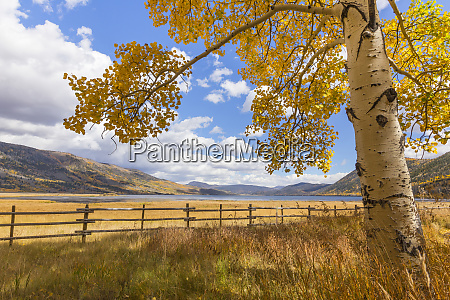 usa utah fishlake national forest landscape