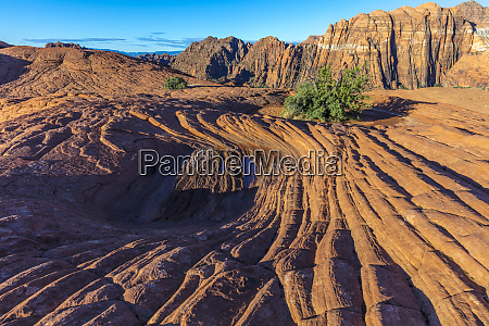 petrified sand dunes at snow canyon