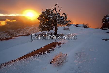 usa utah canyonlands national park winter