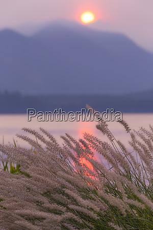 usa washington state seabeck sunset over