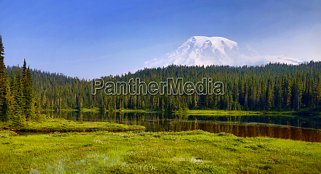 usa washington state mount rainier national