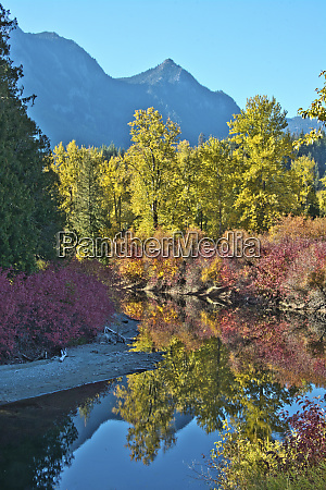 fall foliage white river area wenatchee