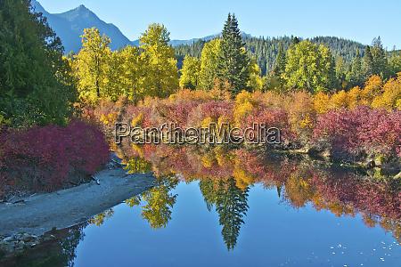 fall foliage white river area wenatchee