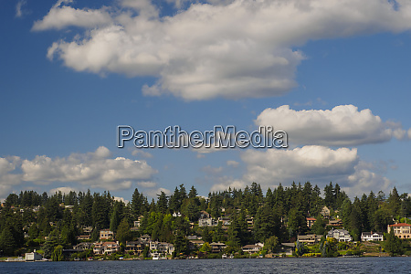 usa washington state bellevue residential neighborhood