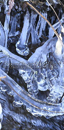 icicles in creek stevens pass washington