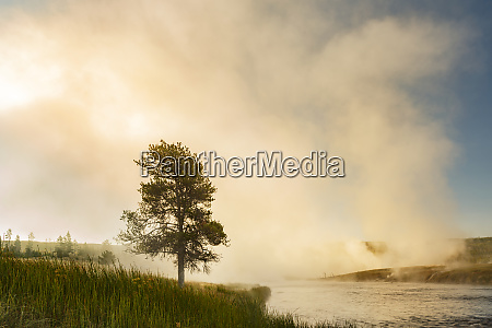 steaming mist at sunrise along firehole