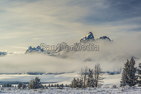 layers of fog evergreen trees and