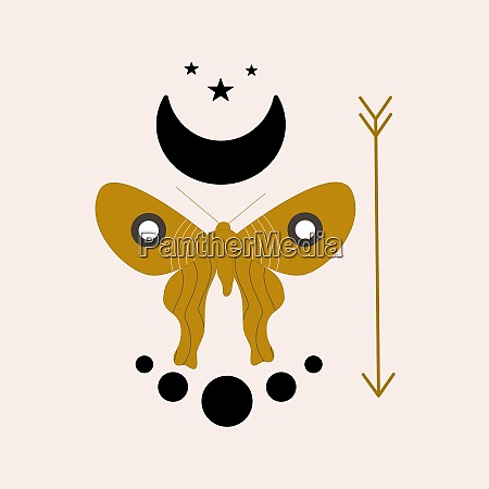 celestial elements and butterfly illustration