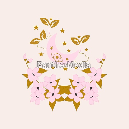 cute pink celestial elements and flowers