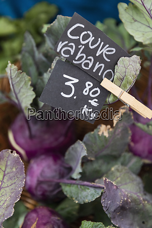 close up portuguese cabbage kale with