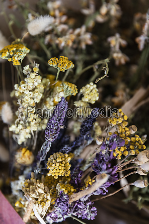 close up dried chamomile and lavender