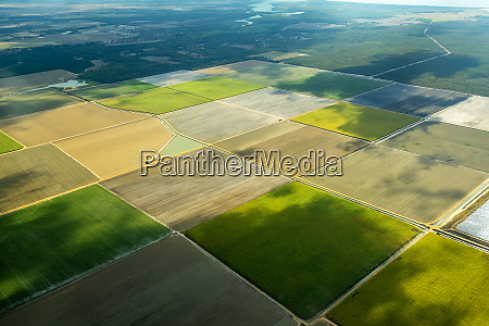 aerial view of green fields cultivated
