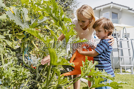 mother and son watering plants in