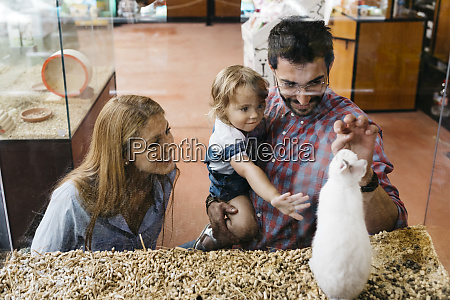 happy family looking at rabbit in