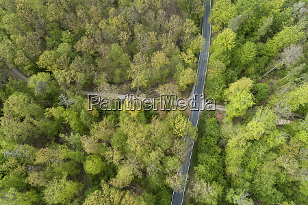 aerial view of road through forest