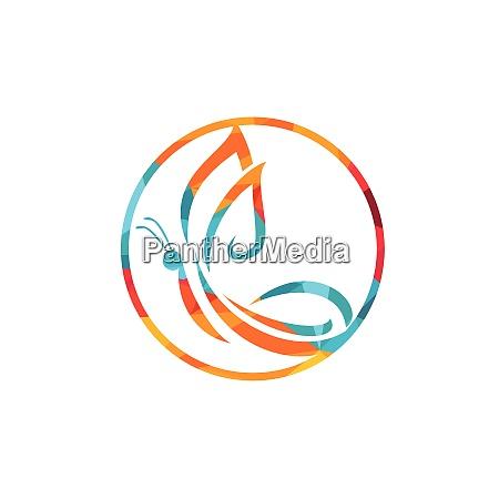 butterfly vector logo design