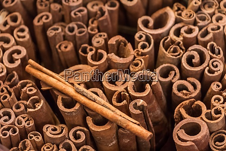 bunch of ceylon cinnamon sticks at