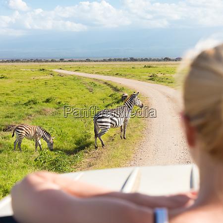 woman on african wildlife safari