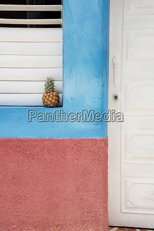 pineapple on a windowsill in trinidad