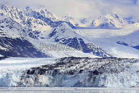 harvard glacier in college fjord southeast