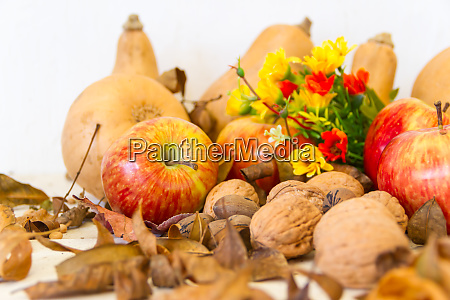autumn harvest composition with pumpkins and