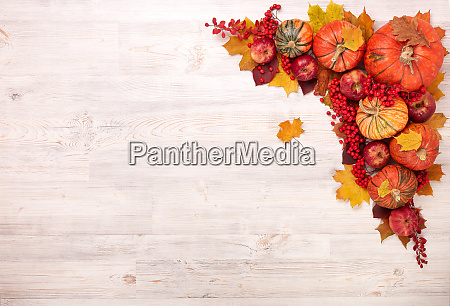 thanksgiving background autumn harvest