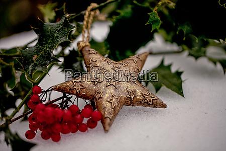 christmas star ornament with ilex