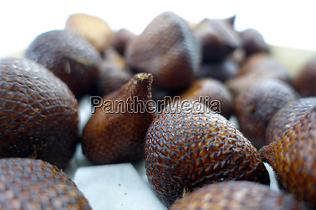 exotic snake fruit or salak fruit