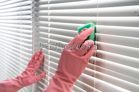 person cleaning window blinds
