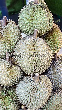 durian pile fruit asian fresh sweet