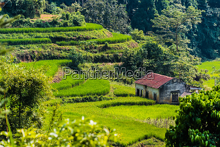 lanscape view of ha giang province