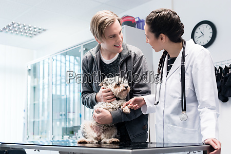 smiling veterinarian taking care of a