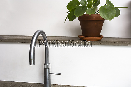 modern kitchen faucet with green house